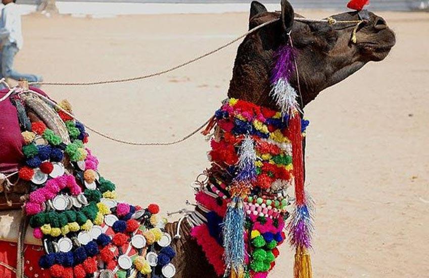 10 lễ hội kỳ lạ ở Ấn Độ -3