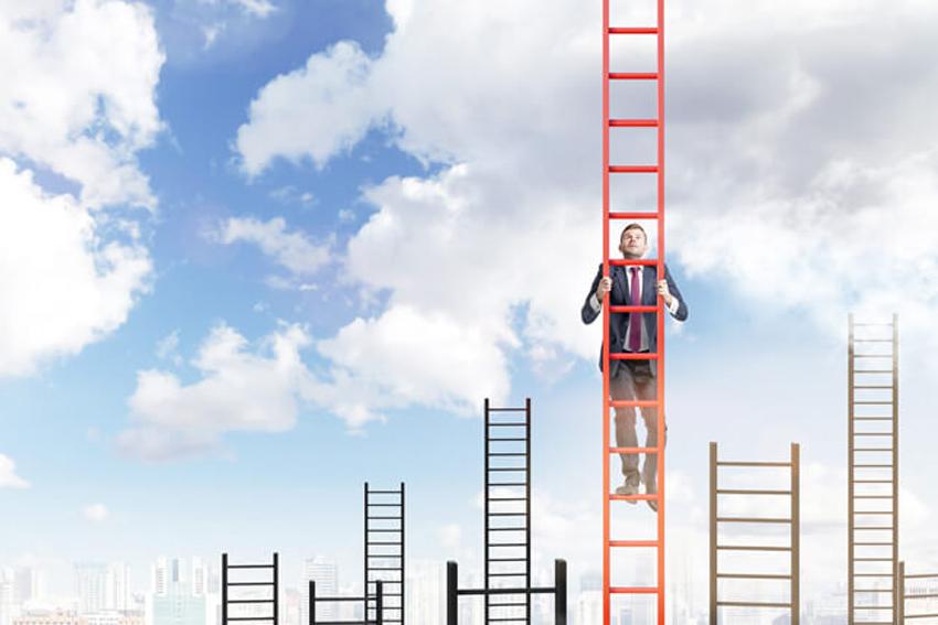 Lộ trình phát triển nghề nghiệp và thang nghề nghiệp - 3