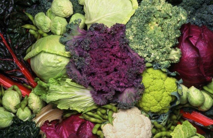 Những rau củ quả và hạt nào do con người làm ra? -2