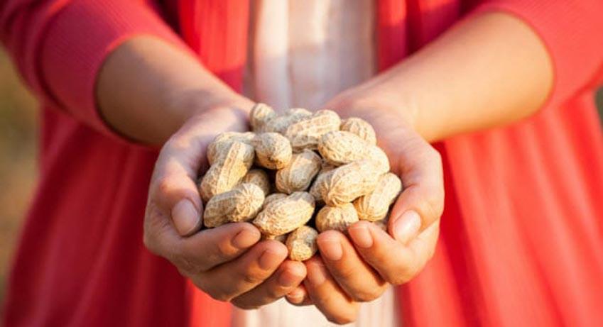 Những rau củ quả và hạt nào do con người làm ra? -4