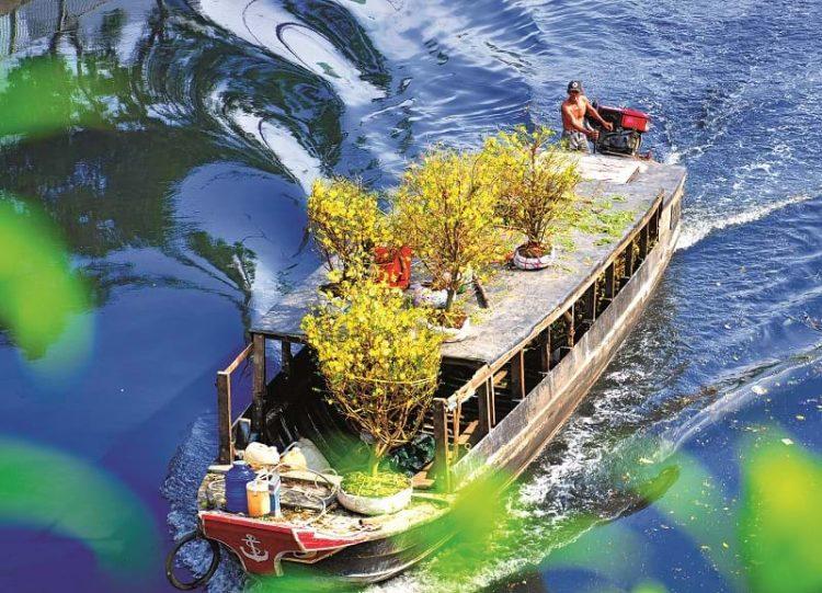 Điểm độc đáo của chợ hoa bến Bình Đông là chợ họp ngay bên sông, các sản vật được bày trên thuyền, trên bờ, người bán người mua nhộp nhịp từ ngày 23 tháng chạp hàng năm.
