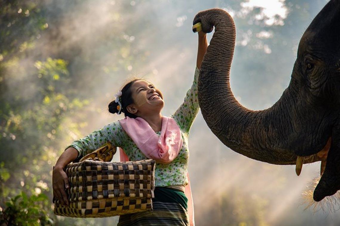 15 bức ảnh hạnh phúc nhất trong năm 2019 -8