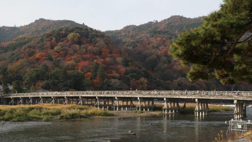 Nhật Bản quảng cáo 'du lịch không người' mùa dịch COVID-19 - 6