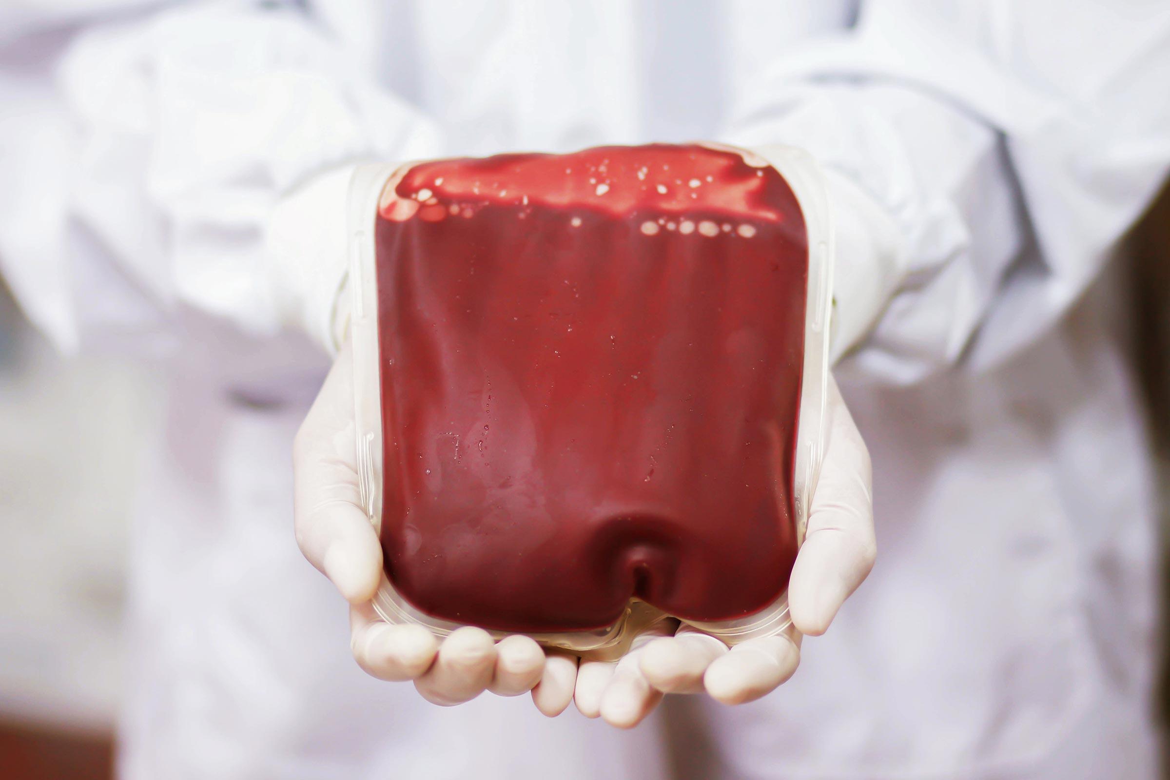 Săn lùng máu nhân tạo - 03