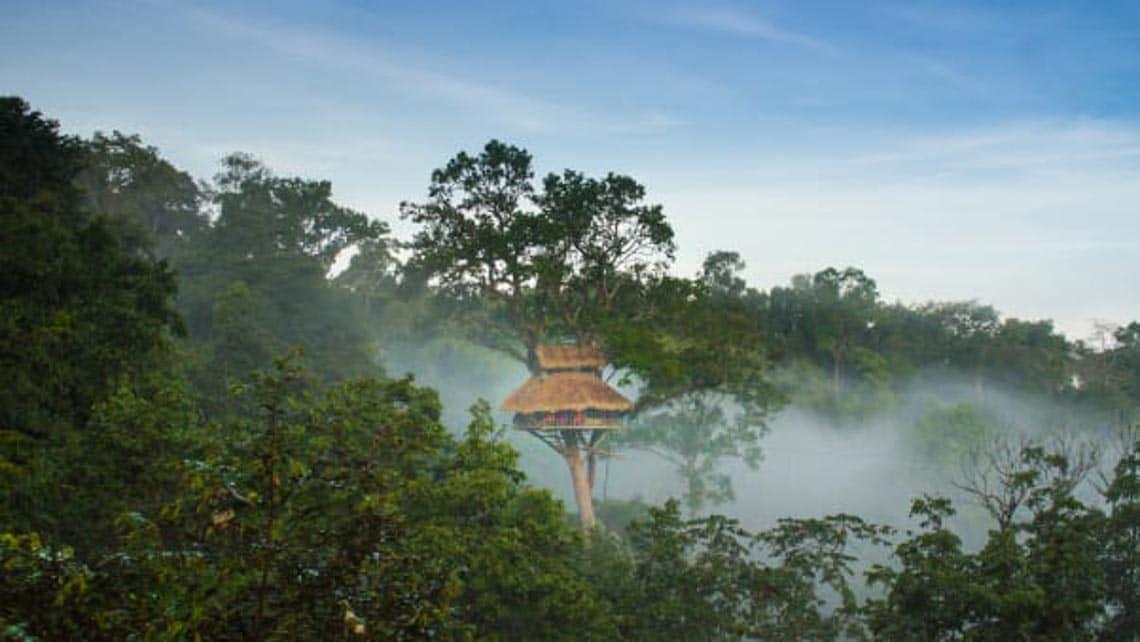 Thú vị với nhà trên cây ở Lào -1