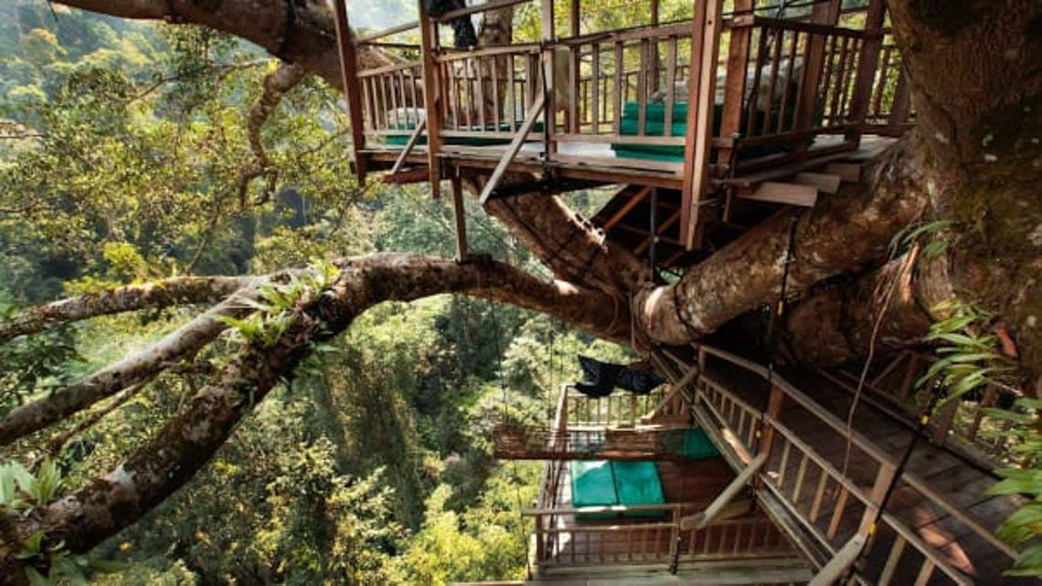 Thú vị với nhà trên cây ở Lào -5