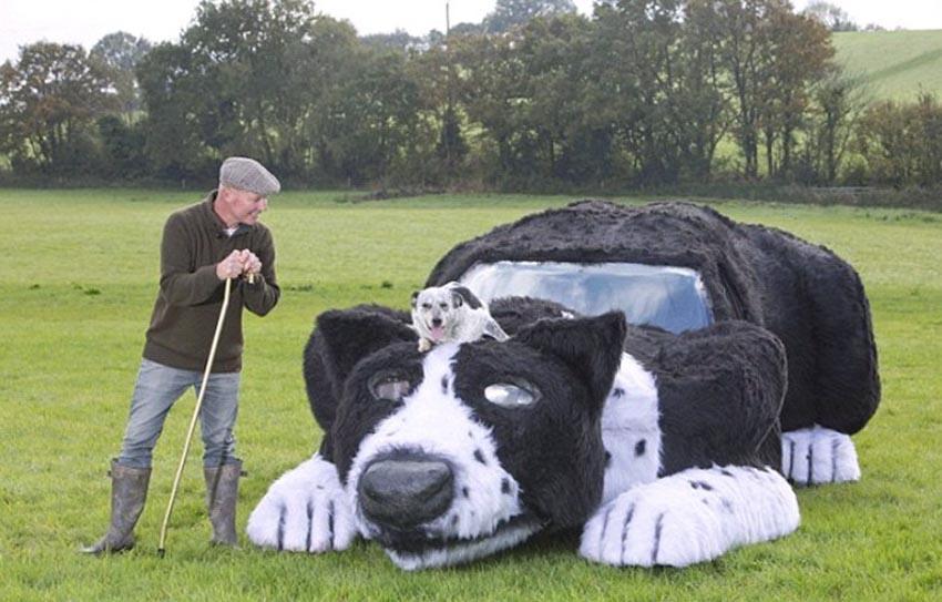Ảnh vui: Xe hơi... chó chăn cừu! -2