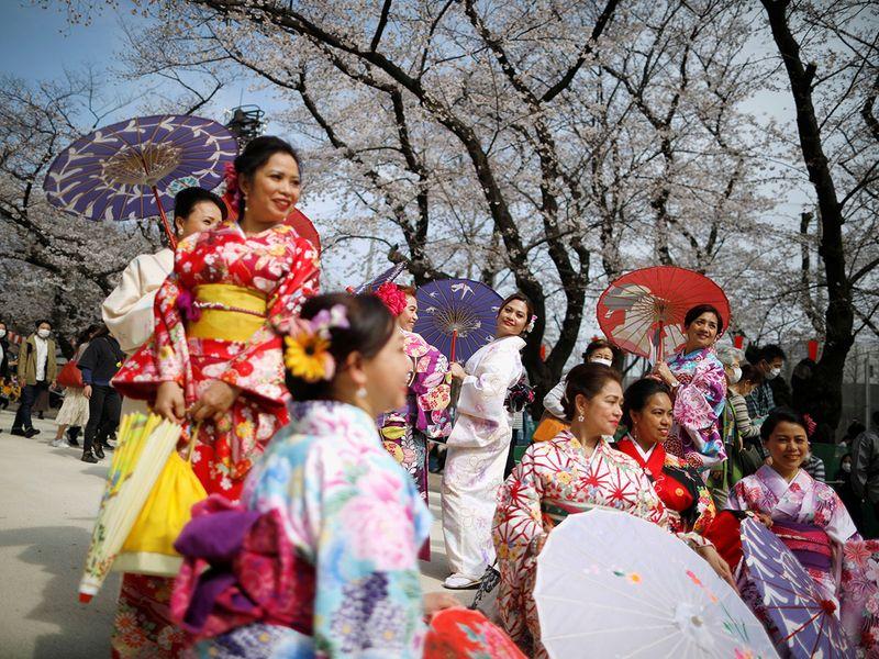 Nhật ra ngoài ngắm hoa anh đào bất chấp cảnh báo về coronavirus - 06
