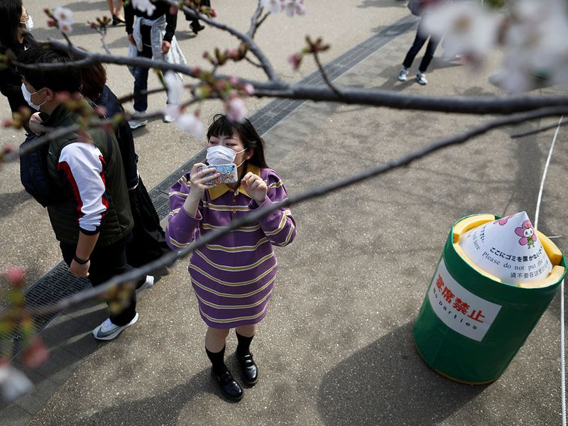 Nhật ra ngoài ngắm hoa anh đào bất chấp cảnh báo về coronavirus - 08