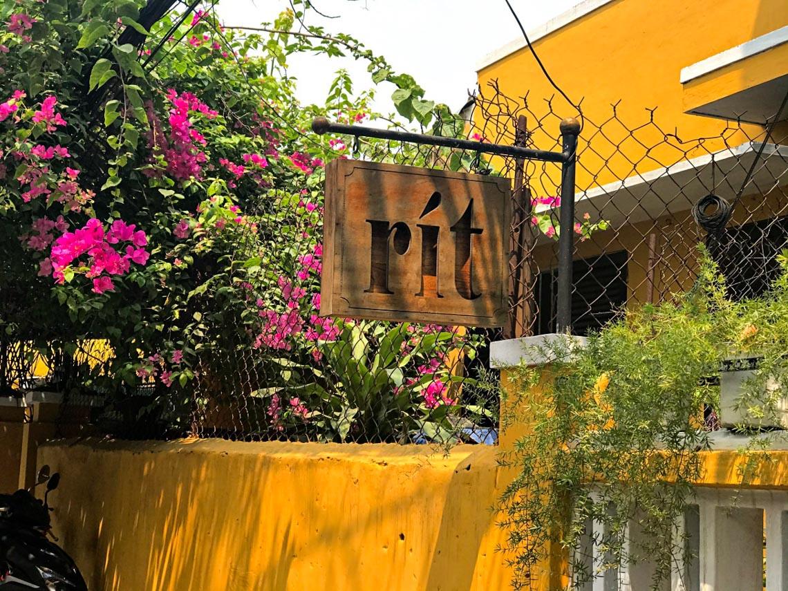 Hoa giấy nở rực rỡ Hội An trong 'những ngày corona' -2