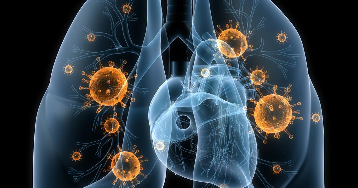 Khả năng đối phó với nhiễm nấm và vi rút của hệ miễn dịch - 2