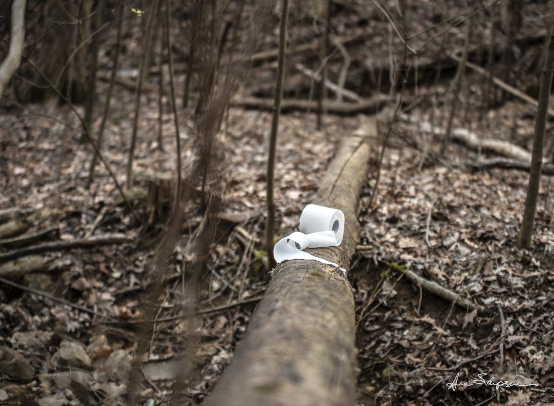 Nhiếp ảnh gia Mỹ 'gây sốt' vì bộ ảnh giấy vệ sinh 'sắp tuyệt chủng' -4