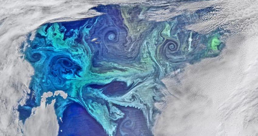 Những chuyện thú vị liên quan đến đá phấn -8