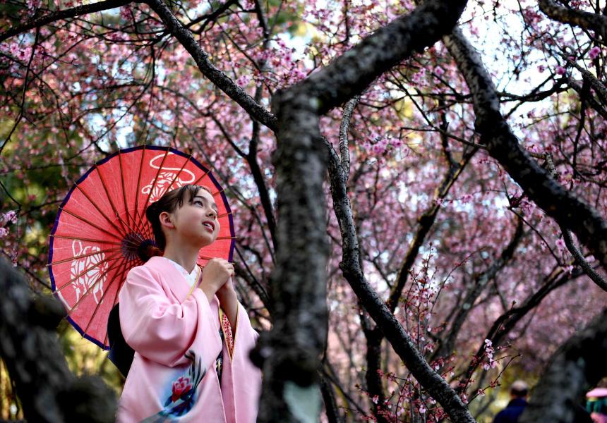 Những tương phản trong văn hóa Nhật - 05