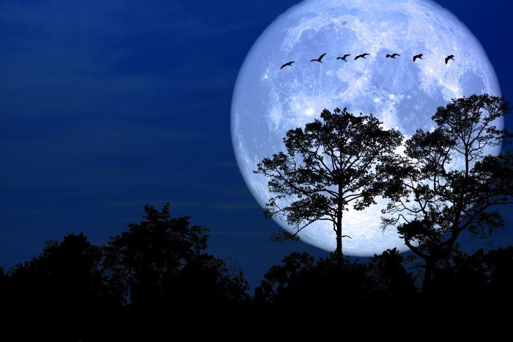 Việt Nam sắp đón siêu trăng lần thứ 2 trong năm 2020 vào ngày 9/3 - 3