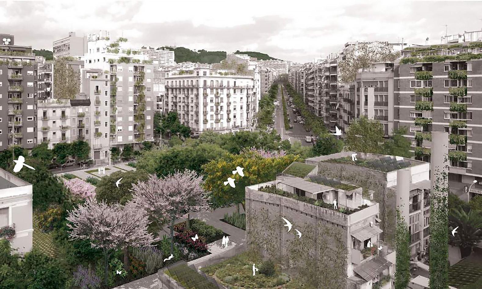 Tản mạn về cây xanh đô thị -03