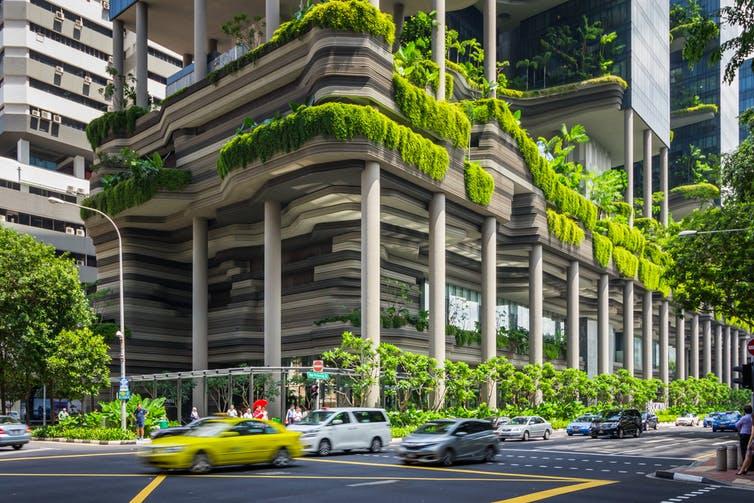 Tản mạn về cây xanh đô thị -05