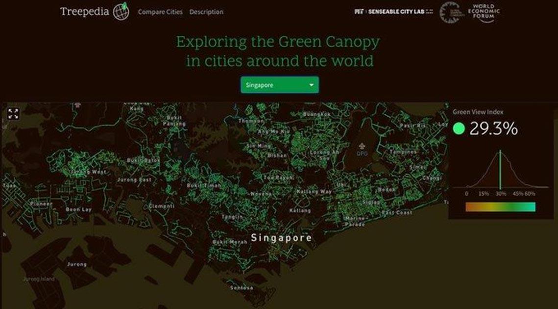 Tản mạn về cây xanh đô thị -4