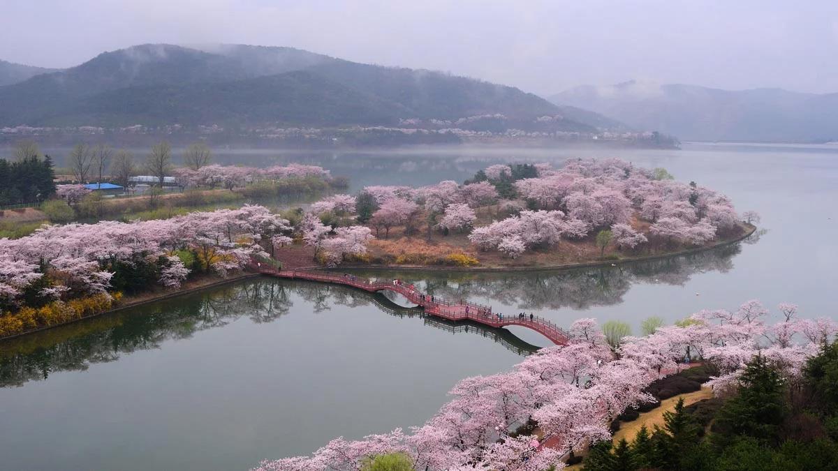 Hồ Bomun ở Gyeongju. Ảnh: Naver