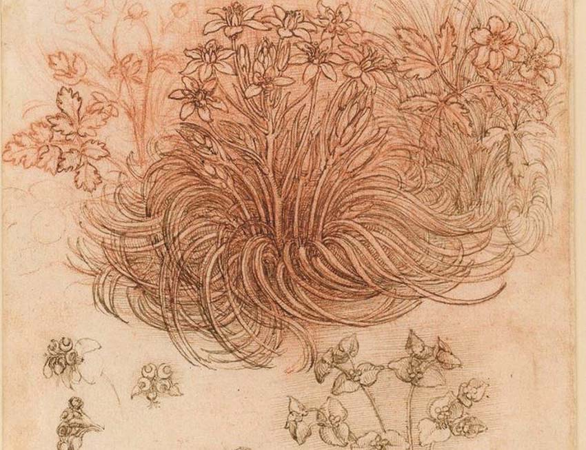 Leonardo Da Vinci và cuộc trưng bày thế kỷ -2