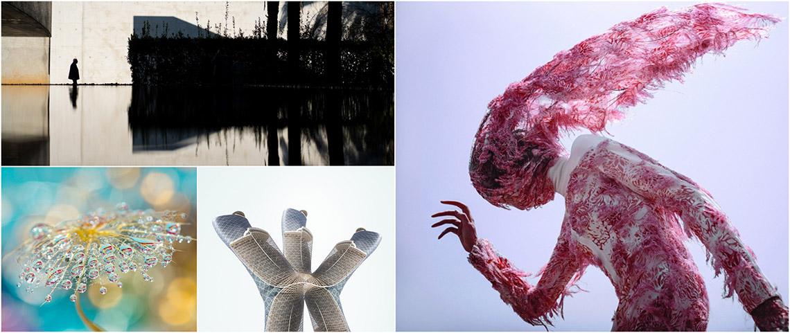 Những bức ảnh lọt vào chung kết Giải thưởng Nhiếp ảnh Mỹ thuật thường niên lần thứ 6 -1