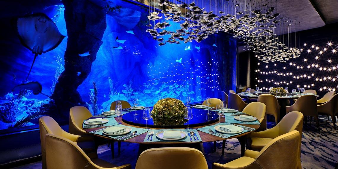 Ngồi trong phòng ngắm cảnh dưới biển -6