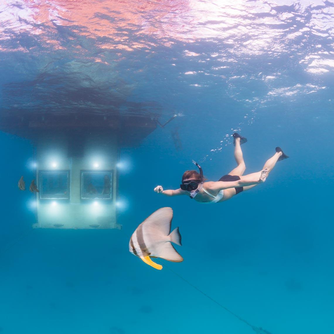 Ngồi trong phòng ngắm cảnh dưới biển -10