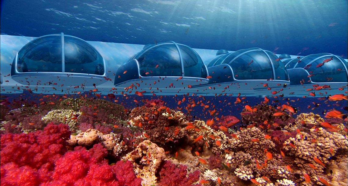Ngồi trong phòng ngắm cảnh dưới biển -13