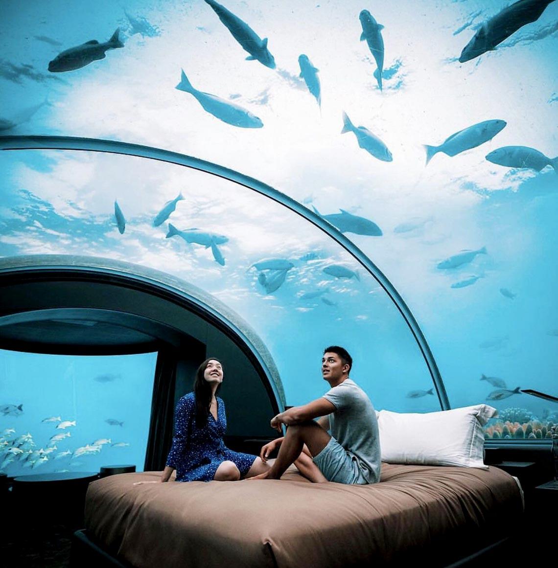 Ngồi trong phòng ngắm cảnh dưới biển -15