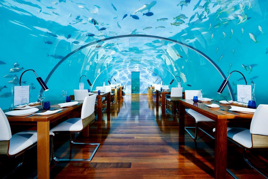 Ngồi trong phòng ngắm cảnh dưới biển -16
