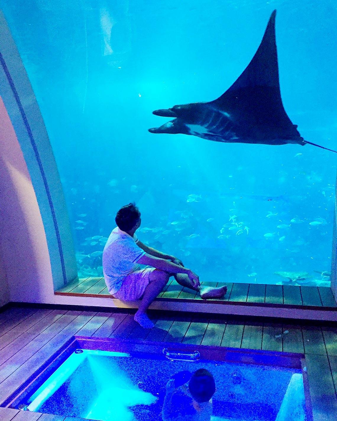 Ngồi trong phòng ngắm cảnh dưới biển -17