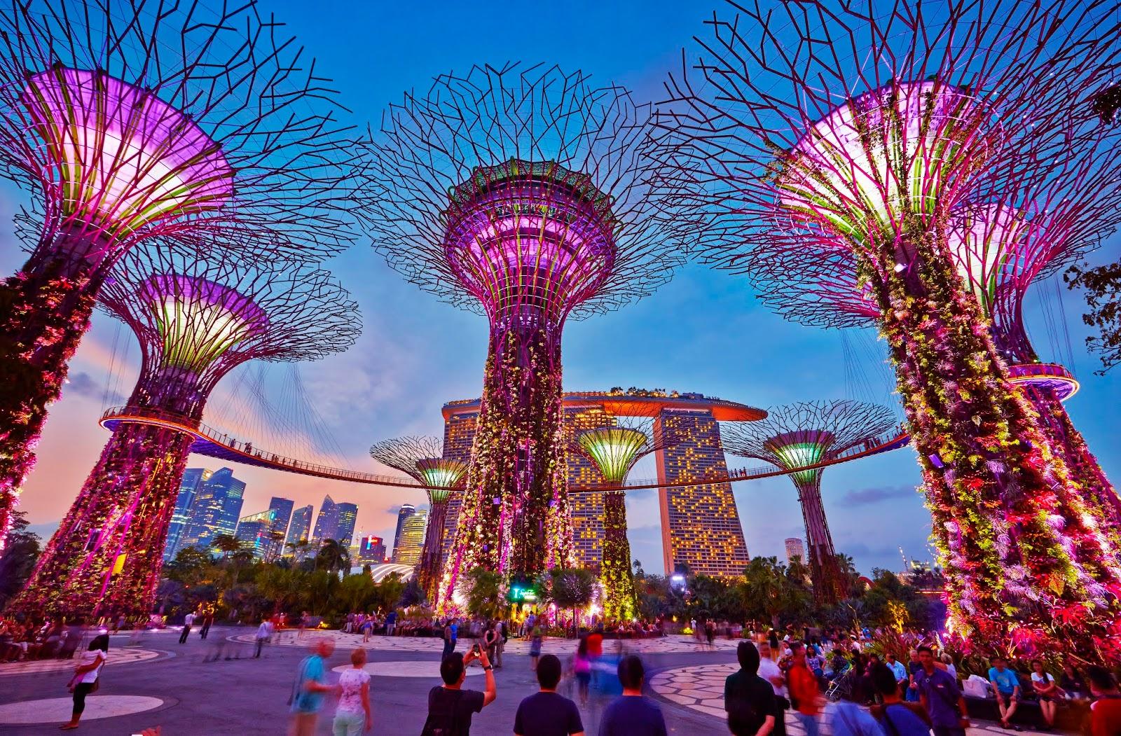 Singapore xác định sẽ tái thiết ngành du lịch bằng hàng loạt ứng dụng công nghệ mới - 2