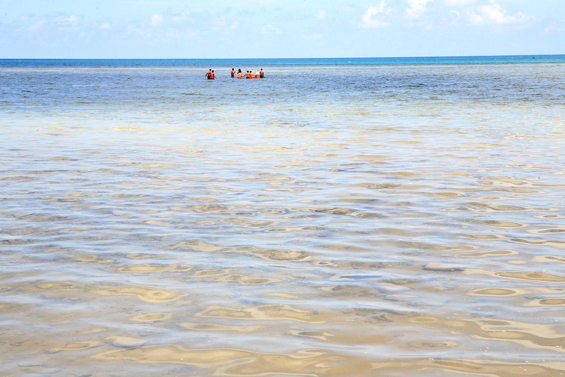 Hè đến rồi, lặn biển ngắm san hô nào! -4