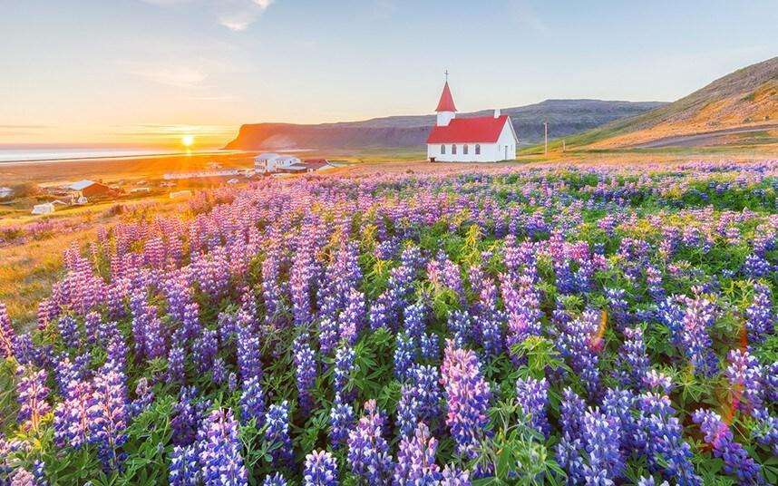 Iceland thông báo đón khách du lịch quốc tế từ tháng 6 = 1