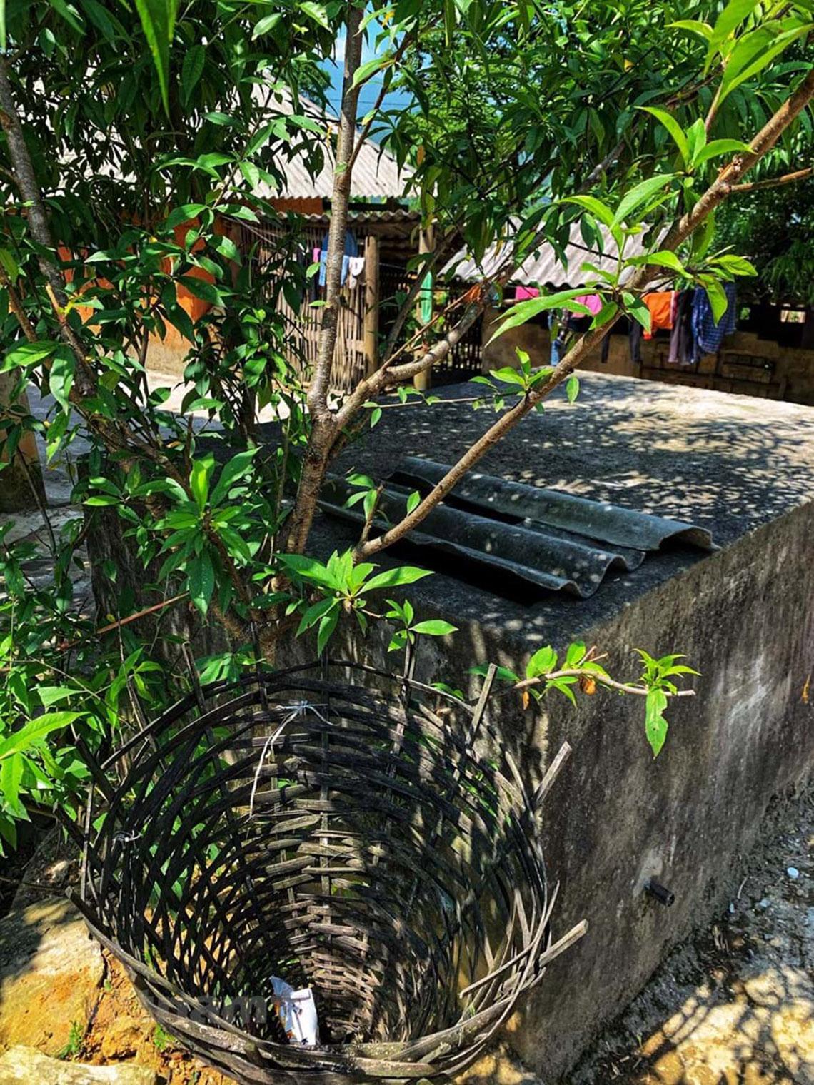 Nhà trình tường: Nét kiến trúc độc đáo 'thân thiện môi trường' -8