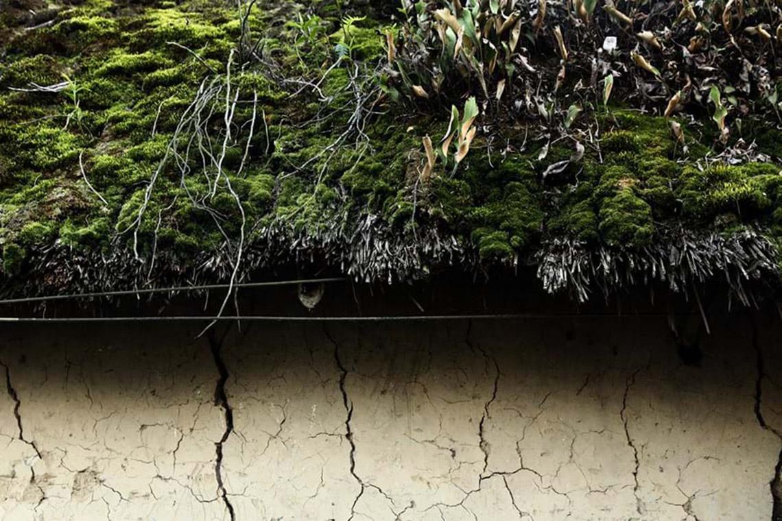 Nhà trình tường: Nét kiến trúc độc đáo 'thân thiện môi trường' -16