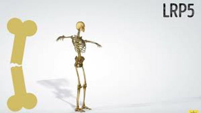 10 đặc điểm cơ thể hiếm thấy nơi con người -3