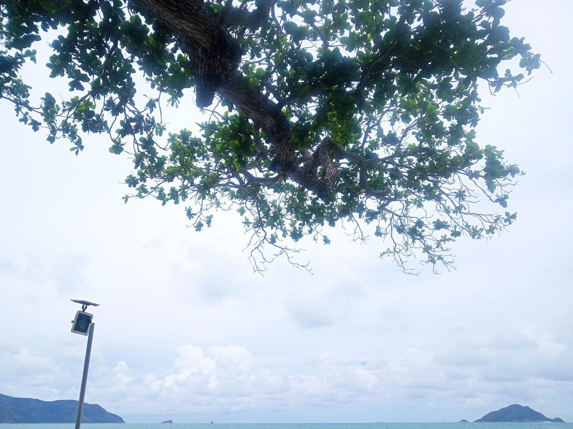 Thong dong Côn Đảo những ngày hè đẹp nhất trong năm -11