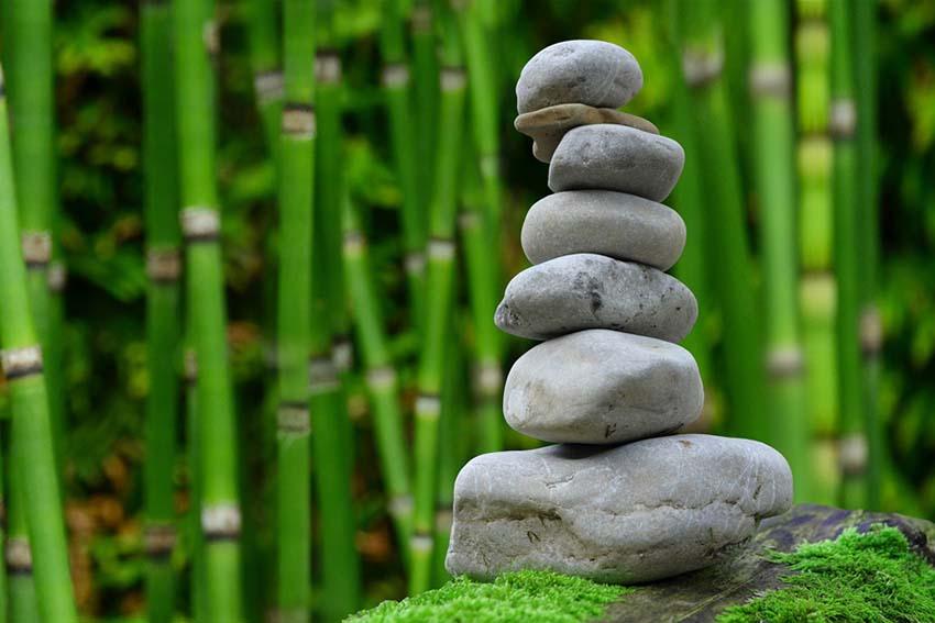 Ikigai, nghêå thuật mang ý nghĩa cho cuộc sống -1