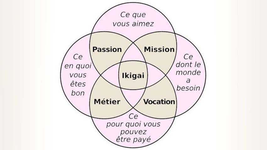 Ikigai, nghêå thuật mang ý nghĩa cho cuộc sống -3