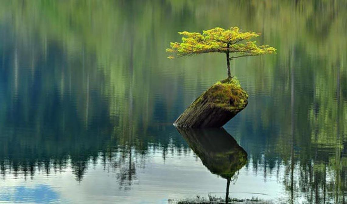 Suy ngẫm: Cuộc sống không có nếu như -2