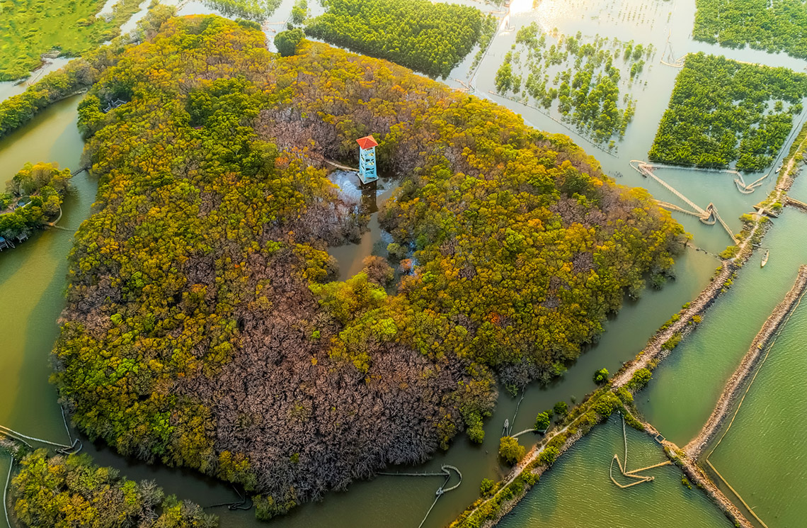 Vẻ đẹp trù phú của vùng nước Tam Giang - Cầu Hai -1