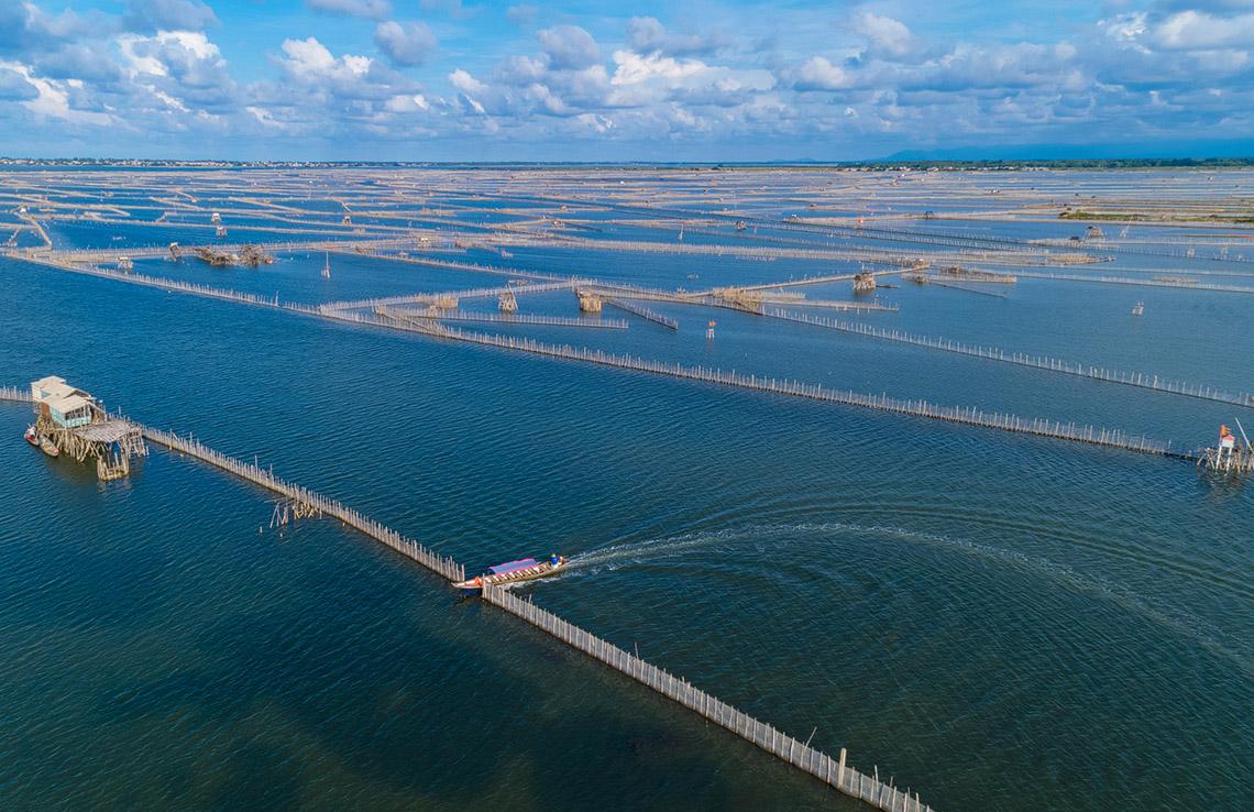 Vẻ đẹp trù phú của vùng nước Tam Giang - Cầu Hai -6