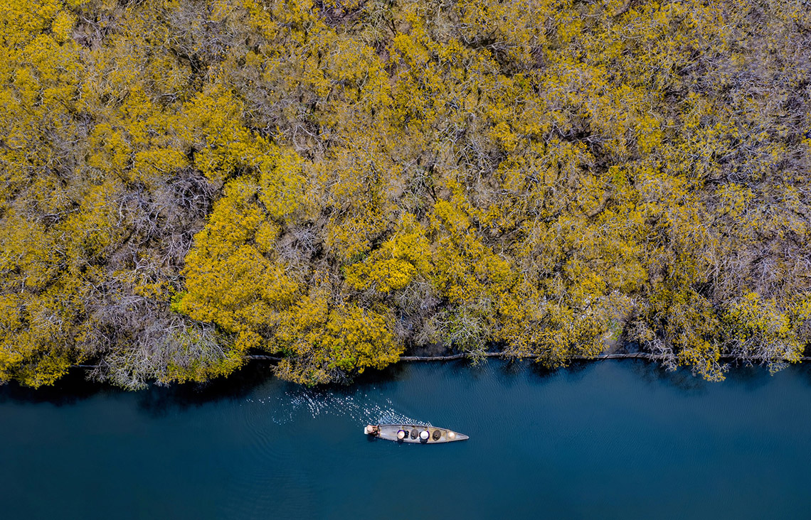 Vẻ đẹp trù phú của vùng nước Tam Giang - Cầu Hai -11