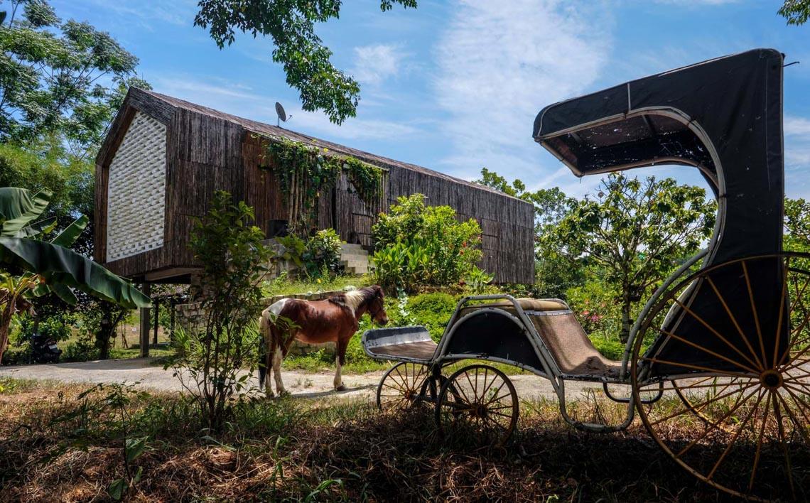 Cuộc sống tiên cảnh tại ngôi nhà bên sườn đồi ở Đà Nẵng -9