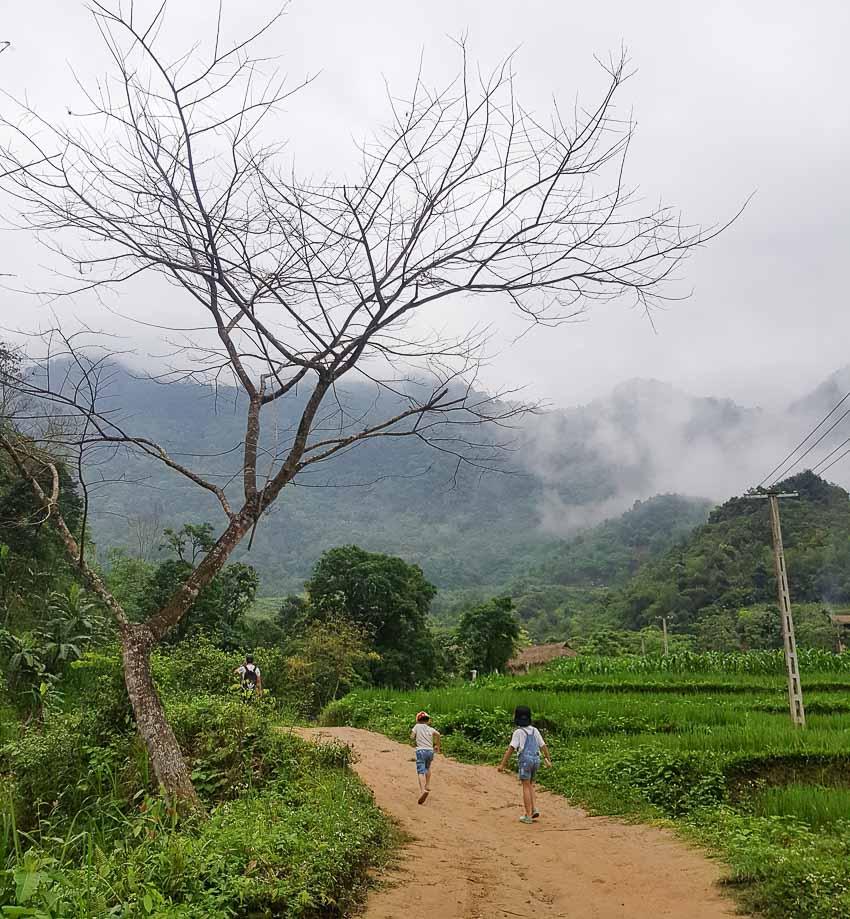 Chạm mây, ngửi hương lúa mới Pù Luông - 3