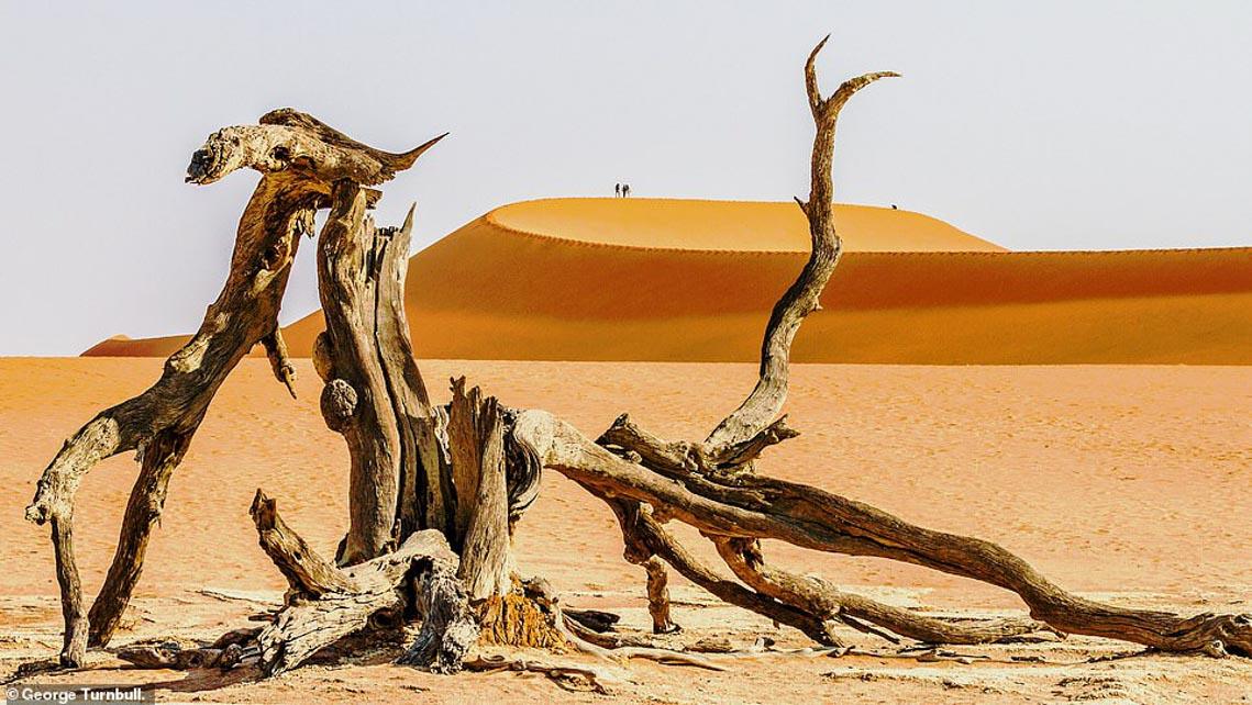 Mùa dịch ở nhà và ngắm thế giới tươi đẹp qua ống kính National Geographic Traveller -4