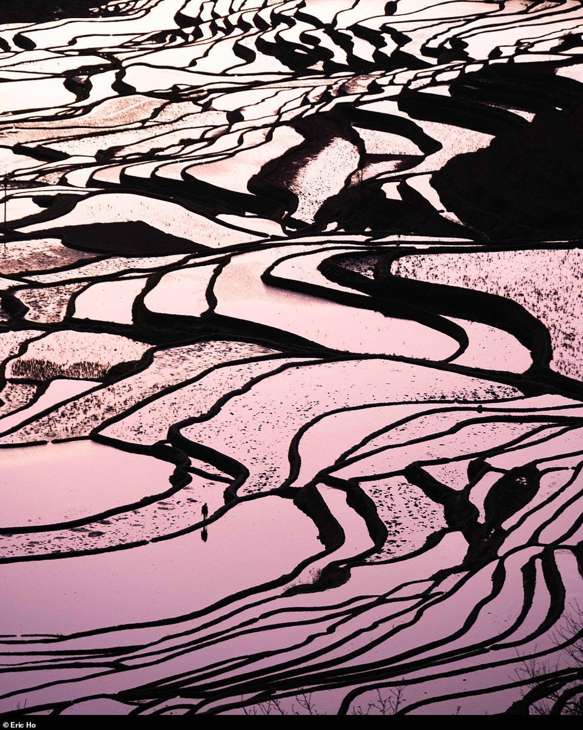 Mùa dịch ở nhà và ngắm thế giới tươi đẹp qua ống kính National Geographic Traveller -11