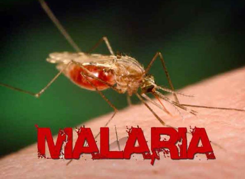 Những thuyết âm mưu liên quan đến dịch bệnh khiến dư luận hoang mang -3