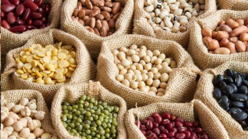 Rối rắm lựa chọn giữa ăn chay và ăn mặn -2